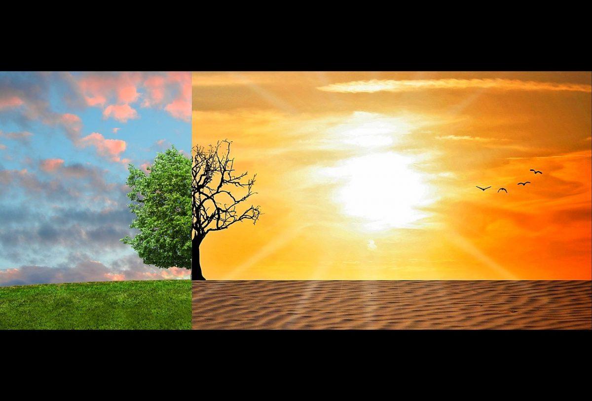 nachhaltige Anlagen