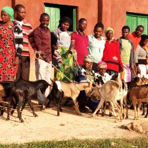 Ziegen liefern nicht nur Milch und Dünger, sondern sorgen auch für Nachwuchs. Das erste Zicklein wird an eine alleinstehende Frau in der Region Kirinda verschenkt.